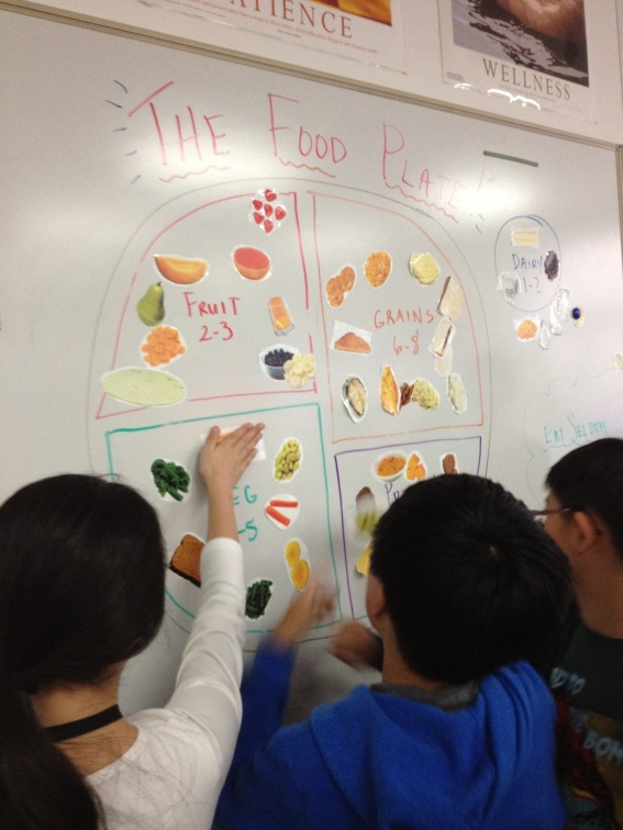 Food Groups! -6th Grade
